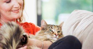 chat-maitresse-bien-etre-sante